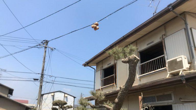 西日本豪雨から、もうすぐ1年、防災の準備は大丈夫ですか?