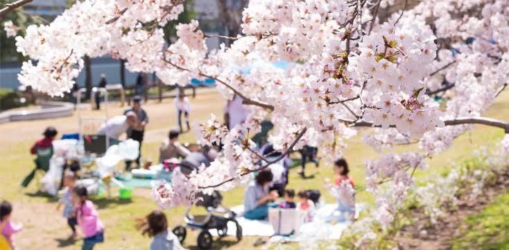 新型コロナ対策、真面目さと緩さの両面を持つ日本人気質