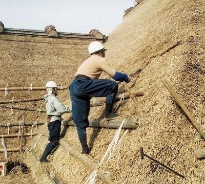 工匠の技が文化遺産に!メイドインジャパンのミズノランニングシューズをオーダーしました!