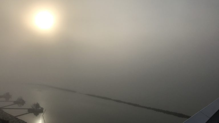 五里霧中、今を現してるなぁ、、(笑)